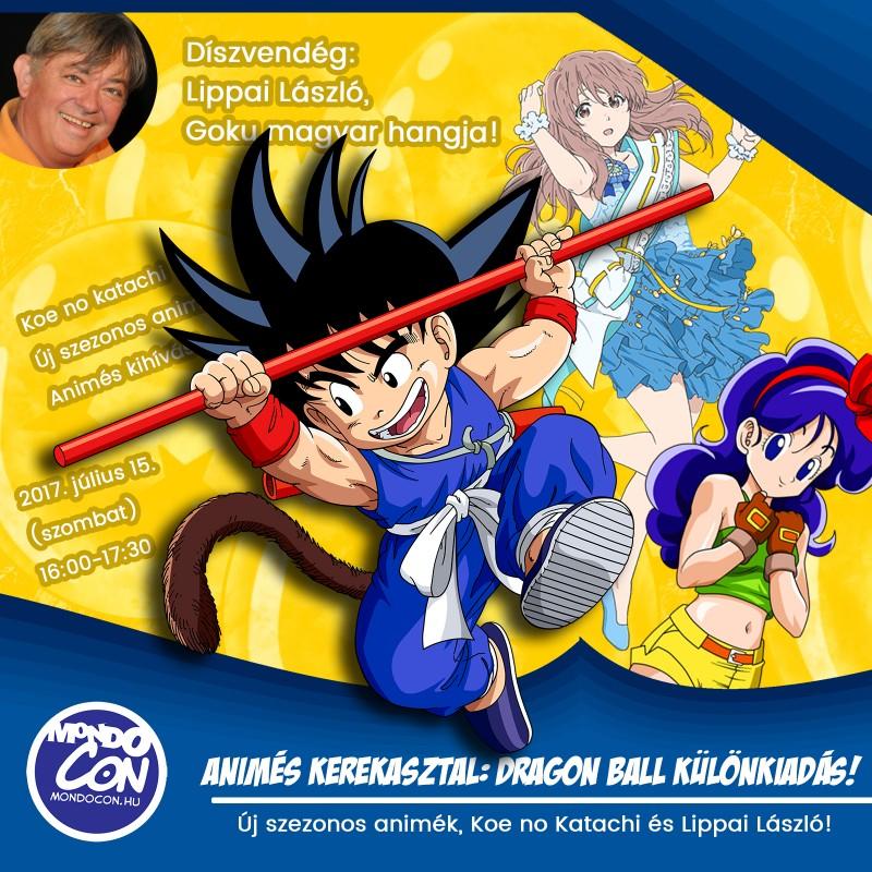 animes-kerekasztal-2017-summer